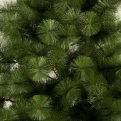 Charming 12 Feet Pine Christmas Tree. Yes