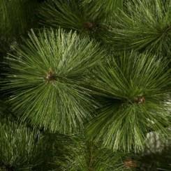 10 Feet Pine Christmas Tree. Yes